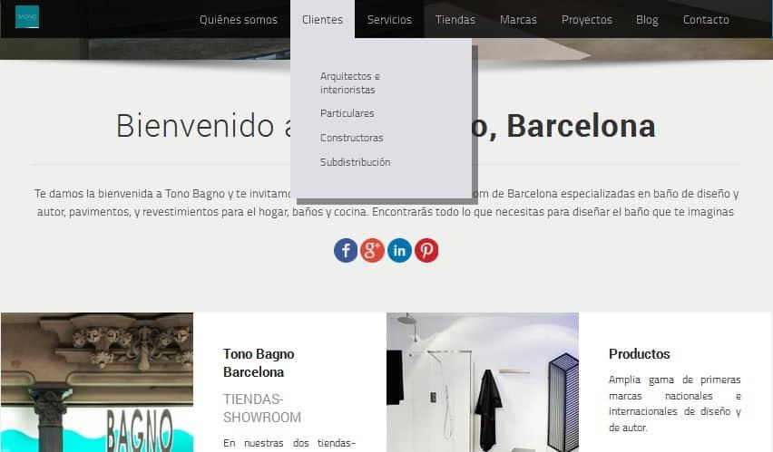 Coherentia-Consulting-pagina-web-Tono-Bagno